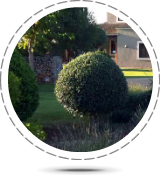 Property Management - Gardening Services, beautifully manicured garden
